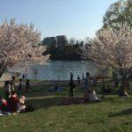 Toronto 散歩 – High Park